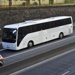 Bus 54 posti